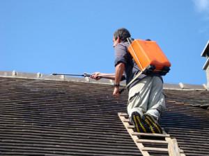 Traitement hydrofuge de toiture Ervy-le-Chatel